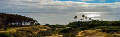 Sunset Cliffs Natural Park (Jorge Hamilton) Tags: california los angeles santa monica san diego miniatura praia beach sun sol cliffs shores jorgehamilton brandao brando flickr photo foto fotografia photography