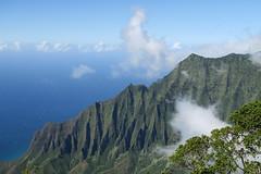 Kauai_Napali Coast State Park_cliffs (penjelly) Tags: hawaii kauai island insel usa sdpazifik pacific inselkette pazifischer ozean polynesienalohastate sandwichinseln sandwichislands polynesia ozeanien mokupuniohawaii waimea state park napali coast kokee kste ausblick view schroff tal valley green wolken clouds