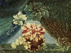 asp04 (josebraz2) Tags: jozef roluf medium espirita oculto alm avlis van lantro caminhos veredas livros repro flor quadro pintura olhar