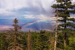 Sandia, New Mexico ([ raymond ]) Tags: img5663 americansouthwest desert newmexico southwest landscape forest trees rainbow