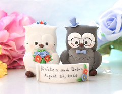 Custom Owls wedding cake toppers coral cornflower blue black eyeglasses banner (PassionArte) Tags: owl gufo cake toppers bride groom ivory white tan brown gray grey purple green rainbow names handmade etsy personalized unique cute country rustic funny elegant custom bouquet bridal gift anniversary eyeglasses coral red