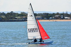 DSC_0316 (LoxPix2) Tags: loxpix queensland australia sailing catamaran trimaran nacra hobie arrow moth 505 maricat humpybongyachtclub humpybash aclass f18 mosquito laser bird spinnaker woodypoint