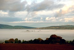 From My Front Door (murtphillips) Tags: brideswell wexford fog countryside rural morning