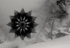 Schneeflocke (Jordi Aragon) Tags: weihnachten nadal neu nikkor50mmf14d schwäbischealb schneeflocken nikond90 unterhausen