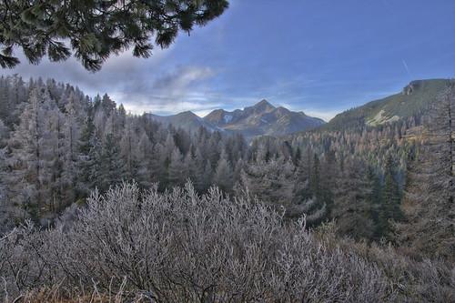 steinfeldspitze