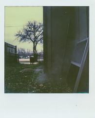 Along the side of the house (alienmeatsack) Tags: brown polaroid sx70 sunday dreary instant sortof impossibleproject