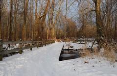 Footbridge in the forest (tquist24) Tags: bridge trees winter snow cold tree ice fence river geotagged nikon footbridge indiana hff bonneyvillemillcountypark littleelkhartriver nikond5300