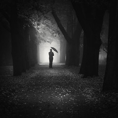 At the Eternal Light (Vesa Pihanurmi) Tags: road wood autumn trees blackandwhite mist man tree fall monochrome leaves fog umbrella landscape helsinki alley branches linden figure lowkey