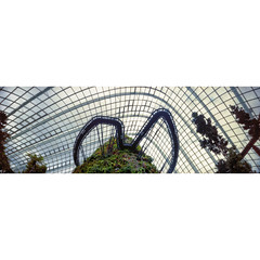 Suspended (JamCanSing) Tags: longexposure bridge cloud forest singapore kodak conservatory pinhole walkway dome suspended portra glasshouse 6x17 portra400 reciprocity realitysosubtle