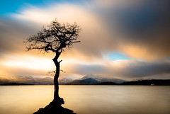 Better than nothing (Semi-detached) Tags: sunset seascape mountains cold tree clouds that landscape scotland warm long exposure scottish lonely loch lomond cliche semidetached balmaha milarrochy