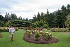 A Walk Around the Rose Garden (Jocey K) Tags: flowers trees newzealand roses sky people clouds lawn hills southisland centralotago queenstown rosegarden queenstowngardens tripdownsouth