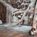 Frozen Avalon Falls