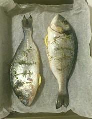 orata al forno ripiena di limone ed erbette aromatiche (Bettinaincucina) Tags: love limone pesce forno ricetta orata erbettearomatiche