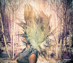 In the Kingdom of Winter, II (briancparks) Tags: trees winter portrait woman abstract cold beauty composite alaska portraits hair studio landscape model nikon headshot flip headshots flipping d600 d90 beautydish compbackground