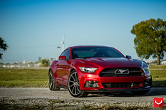 """2015 Ford Mustang GT 50th Anniversary Pack 