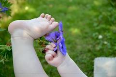 Petit pied (CeriseBleuePhoto) Tags: fleur pied main violet dtail bb extrieur