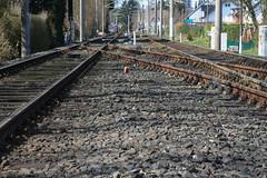 ckuchem-9436 (christine_kuchem) Tags: eisenbahn verkehr gleise haltestelle schiene nahverkehr ffentlich schienennetz gterverkehr personenverkehr