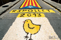Sergio Bejar (9) (Acció Fotogràfica de Ripollet) Tags: 2013 corpus ripollet sergio bejar