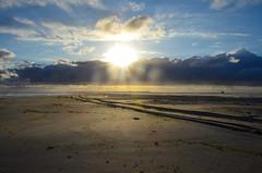 Vlieland - Noordzeestrand - noordwestenwind (Dirk Bruin) Tags: vlieland strand vliehors noordwestenwind noordwest jutten strandjutten jutterij beachcombing beachcomber strandrauber aanspoeling vloedlijn vloedmerk