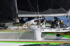 (083) Phaedo (Marie Louise Events Photography) Tags: island sailing yacht skipper racing crew solent round sail isle knots cowes wight