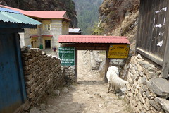 Welcome to Sagarmatha Nationalpark (Alfesto) Tags: trekking nepal cheplung jorsalle khumbaarea himalaya sagarmathanationalpark