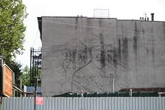 IMG_3051 (Mud Boy) Tags: newyork nyc brooklyn downtownbrooklyn clintonhill