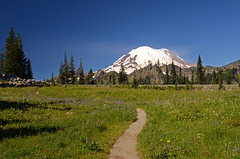 Way to Mount Rainier (Mayur Kotlikar) Tags: mount rainier seattle glacier path way nikond7000 tokina 1224 landscape usa washington
