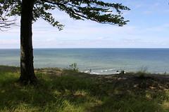 above the cliff of jastrzebia gora (kexi) Tags: view panorama tree shade sea baltic balticsea water horizon jastrzebiagora poland polska polen polonia pologne pomorze pomerania canon june 2015 silhouette green blue instantfave