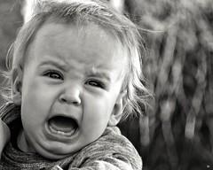 Ira... (judithtrillo) Tags: portrait bw baby retrato bn beb cry ira aonuevo caldelas enfado llanto la pekeafierecilla