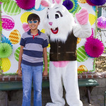 "Alpine Easter Bunny • <a style=""font-size:0.8em;"" href=""http://www.flickr.com/photos/52876033@N08/16903879438/"" target=""_blank"">View on Flickr</a>"