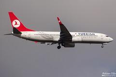 Turkish Airlines --- Boeing 737-800 --- TC-JFC (Drinu C) Tags: plane aircraft aviation sony boeing dsc turkish 737 mla turkishairlines lmml tcjfc hx100v adrianciliaphotography