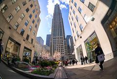 Rockefeller Center Fisheye (JohnMinSF) Tags: newyork manhattan rockefellercenter fisheye ultrawide