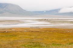 Arctic Tundra IV (danielfoster437) Tags: adventure arctic arcticcircle arcticsummer arctictundra extremeterrain landscape mountain nature outdoors spitsbergen summer svalbard svalbardsummer terrain tundra wilderness