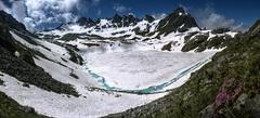 Pink Splash (Elliott Bignell) Tags: mountain mountains alps berg schweiz switzerland suisse ostschweiz berge alpine alpen svizzera rheintal bergsee alp rhinevalley gebirgssee wildsee pizol