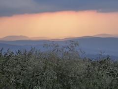 Hohneck pastels (alain01789) Tags: vosges hohneck lanscape paysage montagne mountain light pastel couleurs sunset crepuscule lumiere