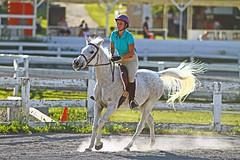 IMG_2572 (SJH Foto) Tags: horse show hunter jumper class girls teenage teen riders action shot tweens