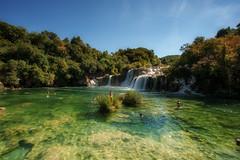 bathtime (Rainer Schund) Tags: bathtime krka kroatien wasser water waterfall schwimmen swim nikon nikond700 natur natureexploring naturemasterclass wasserfall cascade