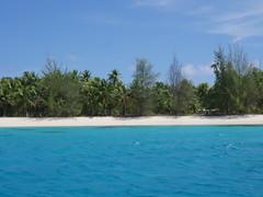 Island adventure!