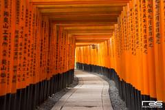 Fushimi Inari-Taisha  (Rodrigo A. Santovea) Tags: voyage trip travel viaje red travelling japan eos gate shrine inari traveller route  nippon shinto torii sanctuary nihon fushimiinari santuario fushimi japn fushimiinaritaisha kyto  inaritaisha sintoismo  sintoista eos600d