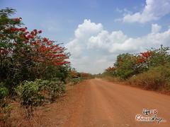 Trail- Koh Ker
