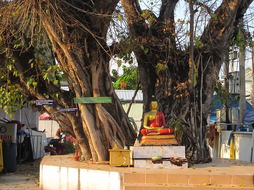 Wat Pha Bong, Chiang Mai