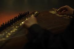 Aux commandes du qânun (Rwan ncy) Tags: music table concert pentax instrument string musique corde kanun kanoun k10d qanoun qanûn quanoun chinon50f14