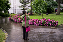 Colour Match (jamiethompson01) Tags: street uk pink flowers summer london wet rain lady zeiss garden phone united stpauls july kingdom 55mm carl match matching 18 za timed 2016 ar7