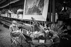 Selling flowers? Maybe. (tdalpert) Tags: flower market seller cart seattle washington pikes place old man selling flowers guy dude reading street photography