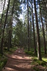 Impression of Ecopark Halle-Hunneberg (suutsch) Tags: ifttt 500px fuji xe2 vivitar 17mm f35 sweden metabones speed booster sverige ecopark hallehunneberg vargn summer