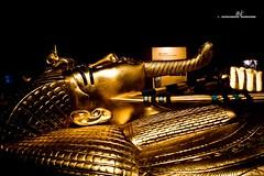 Sarcophagus - Side view (max.fontanelli) Tags: king treasure tomb egypt re tesoro tomba egitto oro tutankhamun pharaon golg faraone