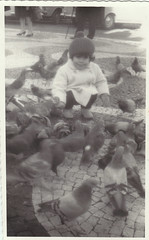 kid feeding pigeons - 1966 (mel's old ads and mags) Tags: winter blackandwhite girl fashion birds vintage kid 60s lisboa lisbon pigeons posing streetscene 1966 oldphoto littlegirl 1960s criana cutekid menina pretoebranco foundphoto sixties pombos vintagephoto vintagekid feedingbirds fotoantiga feedingpigeons vintagefashion anos60 vintagegirl vintagepicture 60sfashion vintagescan kidposing vintagefun anossessenta vintagestreetscene vintagefashionforkids foundinlisbon