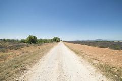 Strada (Mauro_Amoroso) Tags: sky panorama france green nature landscape nikon purple d2x lavander francia paesaggio nationalgeographic provenza lavanda natgeo d600 nital valensole nikonlandscape nikonitalia amorosomauroadventures mauroamorosoadventures