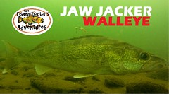 Understanding Walleye Underwater Behavior Ice Fishing the Jaw Jacker (profishingrods) Tags: behavior fishing jacker understanding underwater walleye