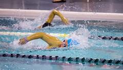 EM190095.jpg (mtfbwy) Tags: pool northolmsted swimming championships swim team rec reccenter dolphins gwyneth